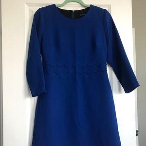 Blue winter dress